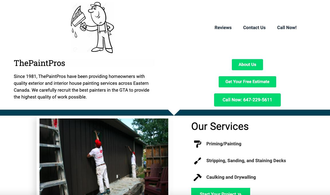 The Paint Pros Website